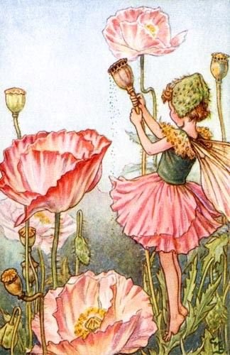 @rosenberryrooms is offering $20 OFF your purchase! Share the news and save!  Peony Fairy Vintage Wall Art #rosenberryrooms