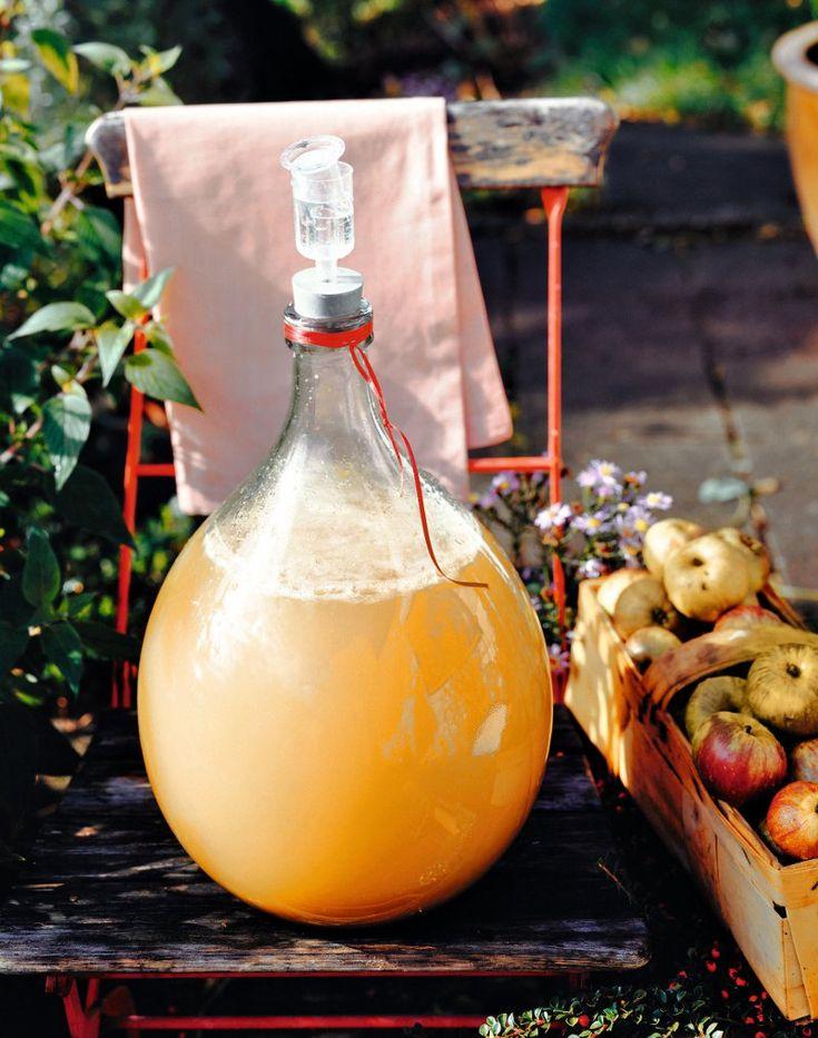 Cidru de mere | Retete culinare - Romanesti si din Bucataria internationala
