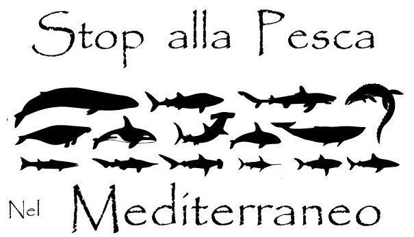 Stop  Alla Pesca Nel Mediterraneo
