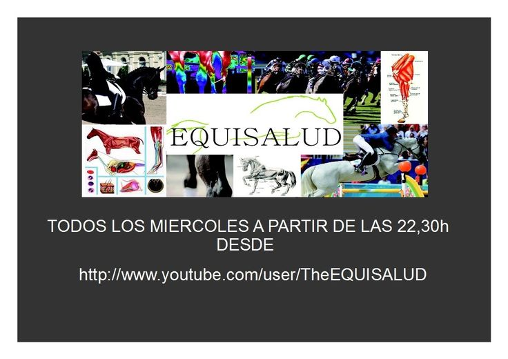 EQUISALUD TELEVISION
