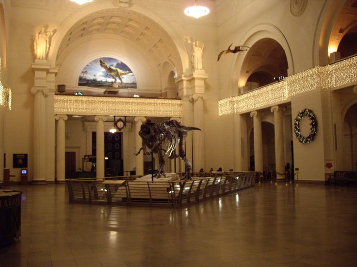 night_at_the_museum.jpg (750×562)