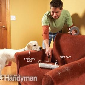 DIY Tip: Wrap duct tape around a paint roller to get up pet hair. It's faster than vacuuming! (via The Family Handyman)
