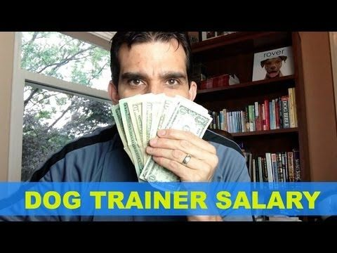Want to know how much money you can make as a dog trainer? This post tells all. http://makedogsyourlife.com/dog-trainer-salary/