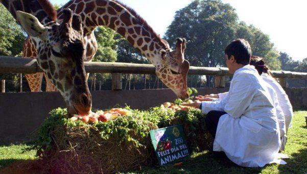 Adiós a un clásico: el Gobierno de la Ciudad cerraría el Zoo – AdriBosch's Magazine