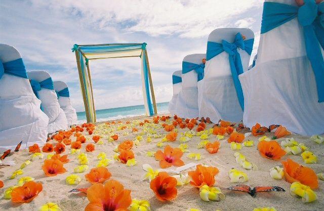 35 best images about Teal & Orange decor on Pinterest ...
