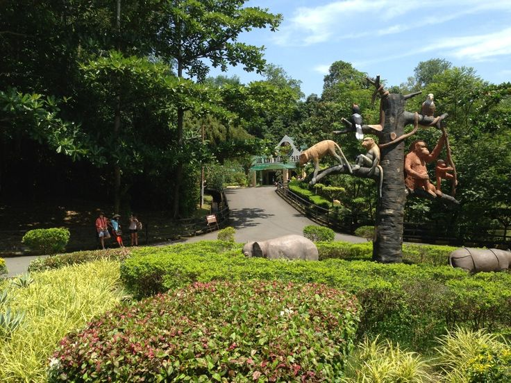 Lok Kawi Wildlife Park, Borneo, Malaysia (avec images)
