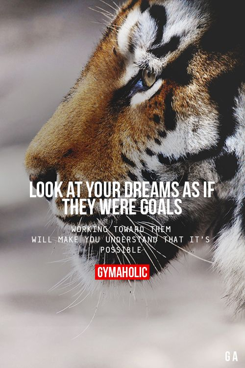 Look At Your Dreams As If They Were Goals