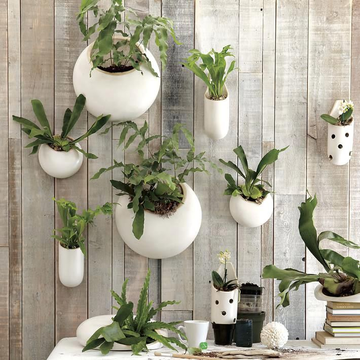 Wall Planters Indoor Marvelous Hanging Wall Planters Indoor About