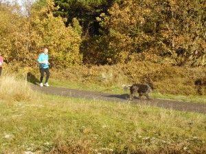 kleintje-berenloop-2014-124