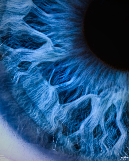 How beautifully complex is the iris of the #eye. Blue brown green eyes. Which do you prefer?