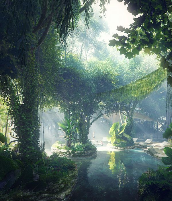 There's A Hotel In Dubai With A Rainforest In The Middle, So Start Saving