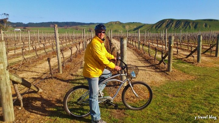 Hawkes Bay Winery - 15 Things To Do On New Zealand's North Island