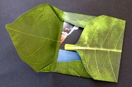 Banana leaf folder printed on textured paper
