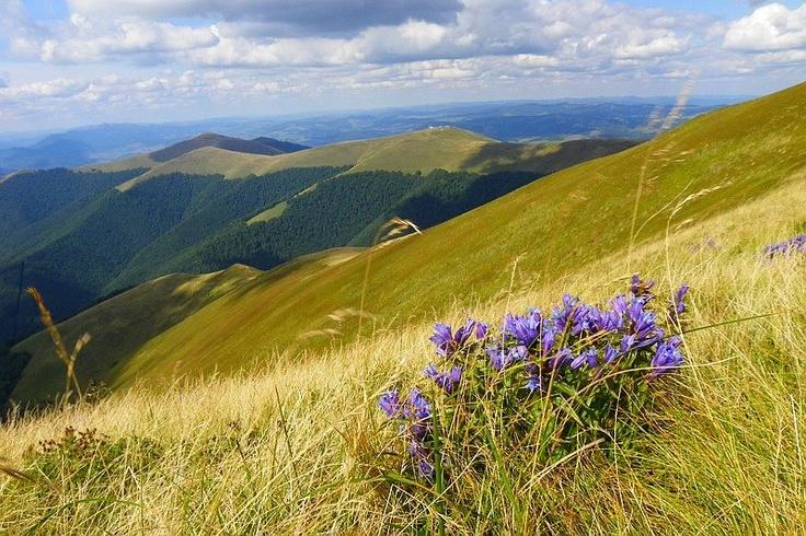 Slovakia, National Park Poloniny