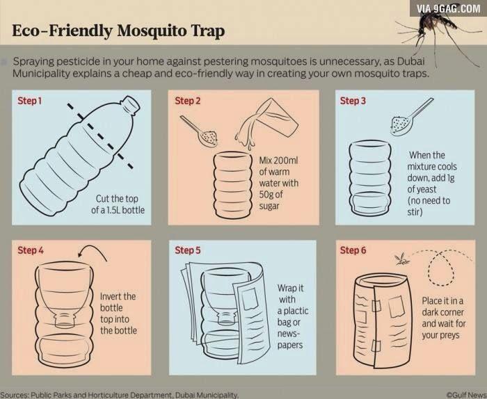 Eco muggen val!