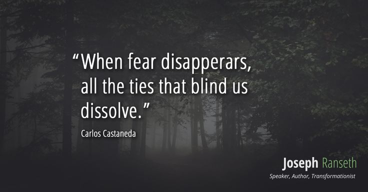 When fear disappears, the ties that blind us dissolve. - Carlos Castaneda