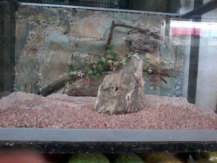 peceras con fondo de piedras naturales