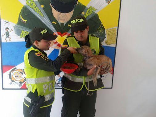 15 metros de profundidad no fue impedimento para que nuestros compañeros rescataran a un cachorro.  POLICIA DE COLOMBIA - Google+