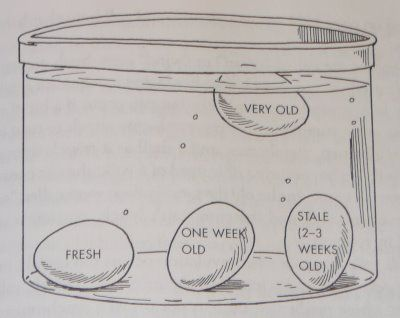 How to tell if your eggs are bad  i knew the fresh one. but this is cool.