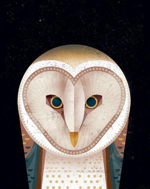 I love this owl illustration by Dieter Braun.