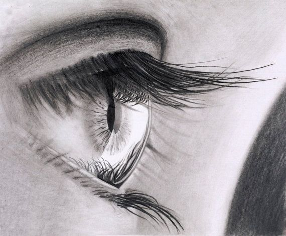 Original pencil drawing of an eye framed by dominicmcalwaneart £250 00