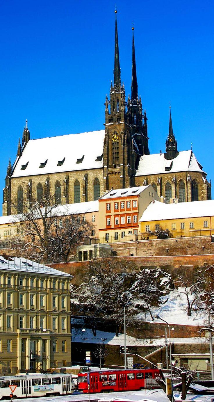 Katedrála Petrov v zimě - Brno