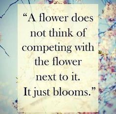 A flower doesn't think of competing with the flower next to it. It just blooms. #reinvention #mamasisterhood