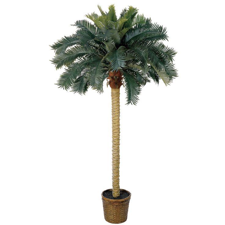 6ft Sago Palm Silk Tree