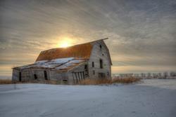 abandoned saskatchewan barn on an old homestead