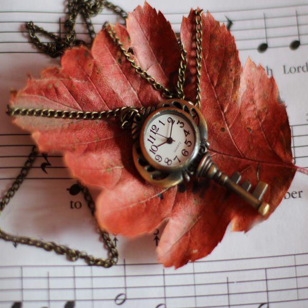 « Mieux vaut perdre sa montre que de perdre son temps.  »   Jean Brassard