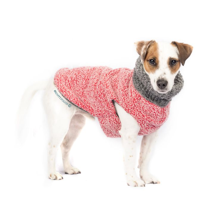 The 25+ best Fleece dog coat ideas on Pinterest | Dog ...