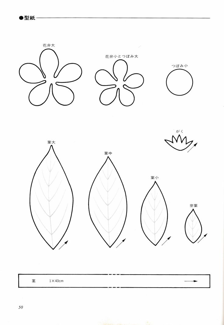 Zinnia Stencil Printable 17 Best images about P...