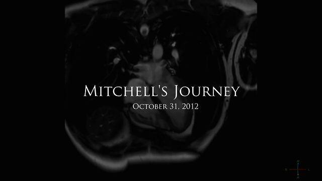 W. J. T. Mitchell