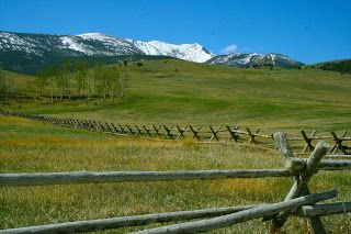 Are you planning to live in Montana? Do you have any interest in living at ranches, farms or other land that is surrounded with natural things?