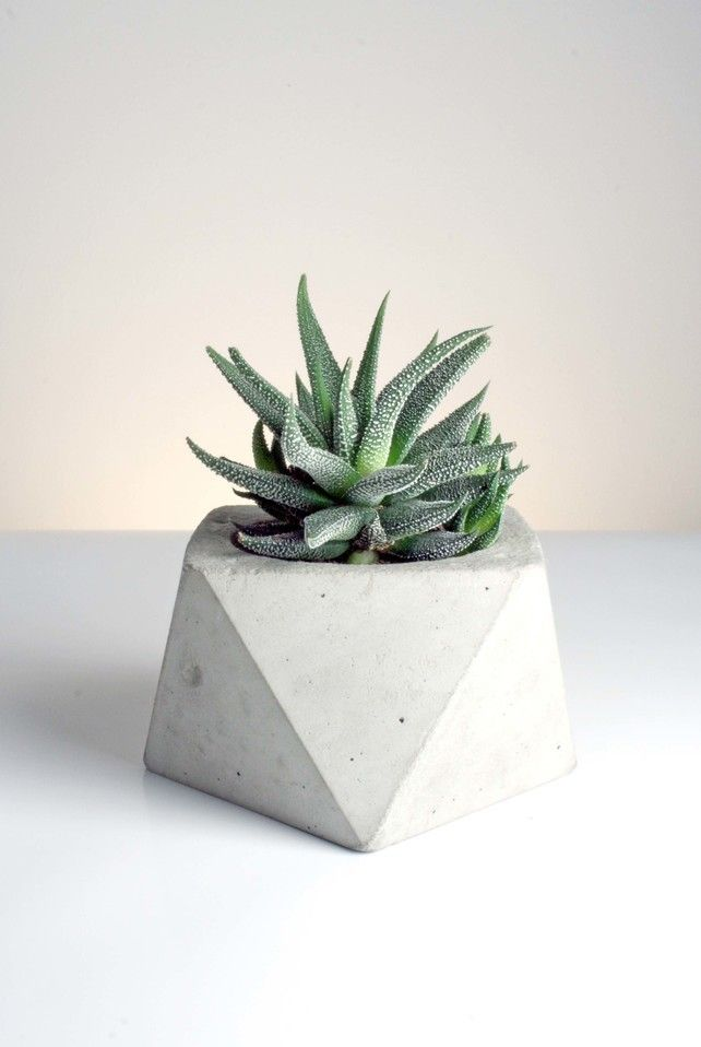 Square Antiprism Planter - Handmade Geometric Concrete Planters