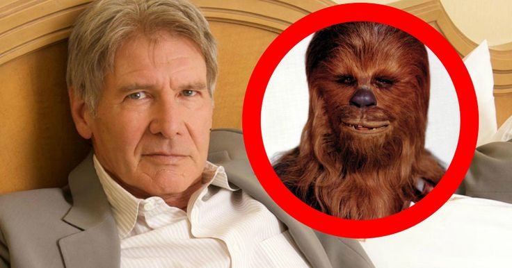 Chewbacca Actor Gives Harrison Ford Plane Crash Update -- While Harrison Ford was initially thought to be in serious condition after a plane crash, the actor's family reveals he is expected to recover quickly. -- http://www.movieweb.com/harrison-ford-plane-crash-2015-chewbacca