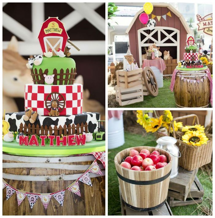 Barnyard Birthday Party via Kara's Party Ideas KarasPartyIdeas.com (2)