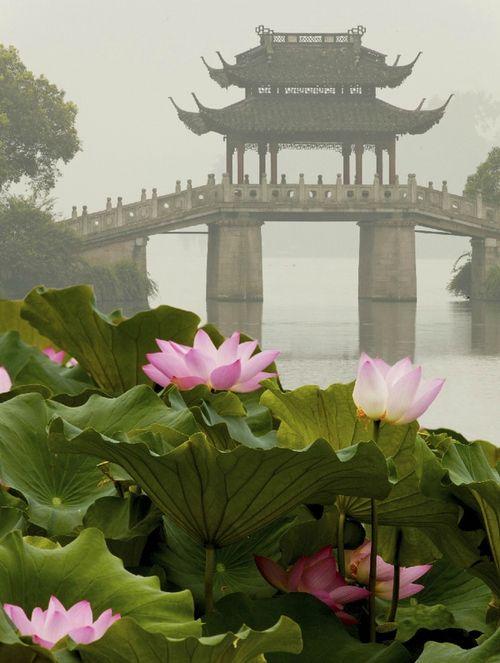 Su Di Puente en el lago del oeste, Hangzhou - China,