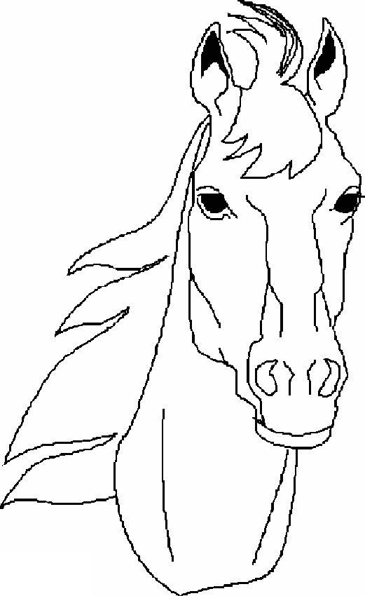 coloring pages of a horse head - 29 best paardenkampje kleuters images on pinterest