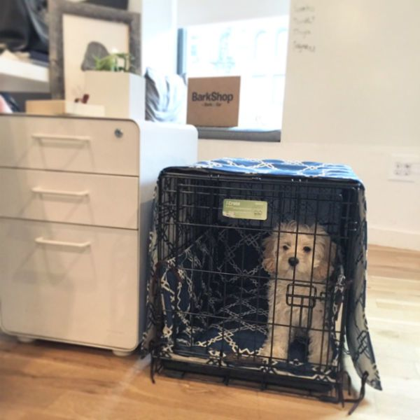 Unbelievably Easy Way To Make Your Dog's Crate Into A Pretty Piece Of Living Room Decor