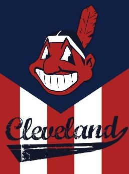 Cleveland Indians vs. Tampa Bay Rays - MLB Cleveland, OH - Sunday, June 2nd 2013 25 tickets donated