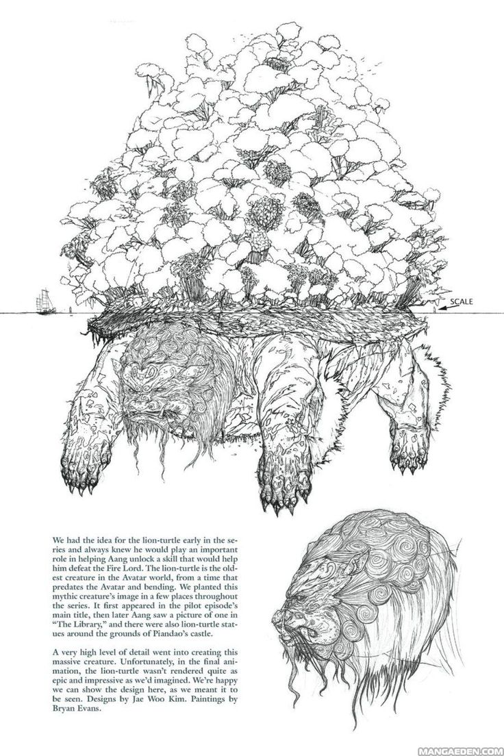 The lion-turtle: a very high level of detail of this massive creature. Designs by Jae Woo Kim; paintings by Bryan Evans. (Manga Avatar: The Last Airbender - The Lost Adventures - Chapter 30 - Page 6)