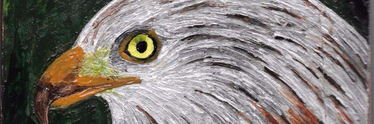 Eens in de zoveel tijd bezoeken wij Marina Bliek en haar vogels. Marina is Valkenier in het Zeeuwse IJzendijke en heeft een prachtige collectie roofvogels waar zij (onder andere) gepassioneerd
