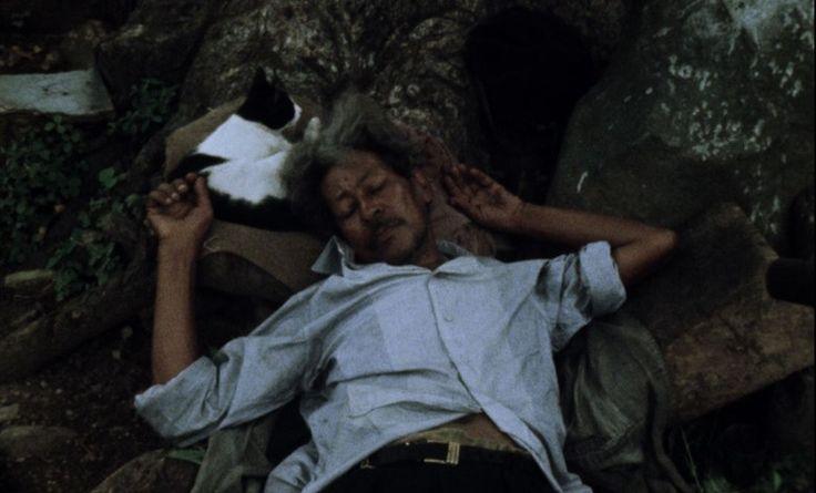 Werner Herzog tworzy filmy od ponad pół wieku. Przez ten czas jego filmografia zdążyła urosnąć do gigantycznych rozmiarów. Składają się na nią pełnometrażowe filmy fabularne, dokumenty i krótsze fo…