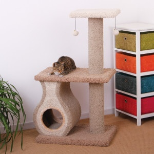PetPals Cat Condo with Teasers - PetSmart