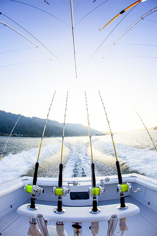 149 Best Fishing Images On Pinterest