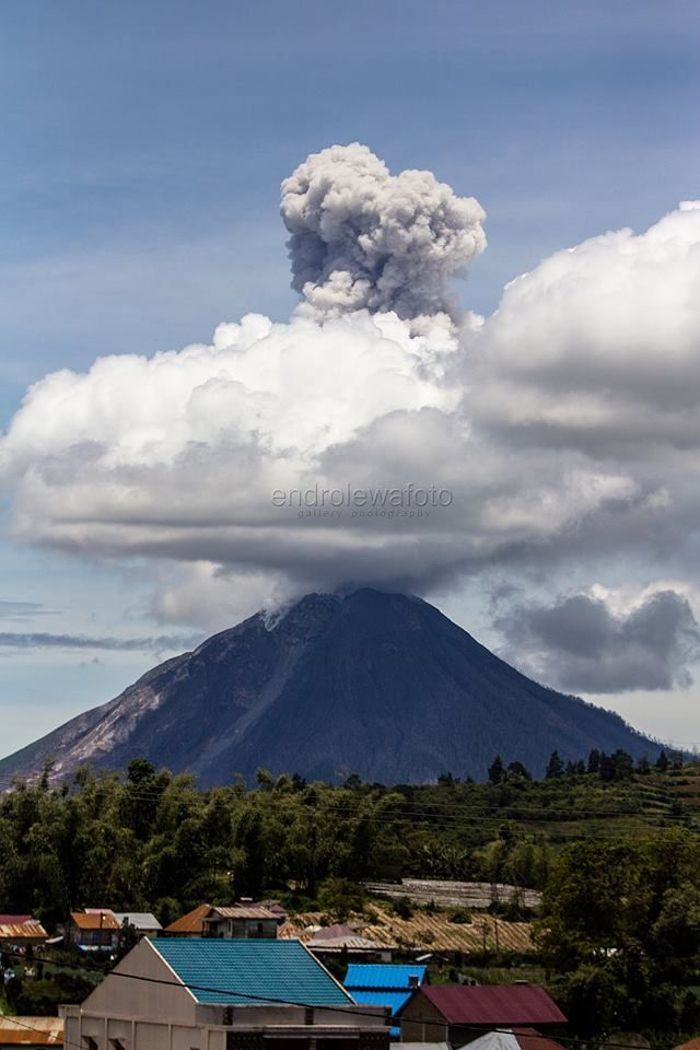 Eruptive plume of the Sinabung the 07.09.2017 / 12h13 local - photo Endro Lewa