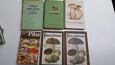 Rar! 6 x alte antiquarische Bücher Pilze bestimmen Führer für Pilz-freunde Eßbar