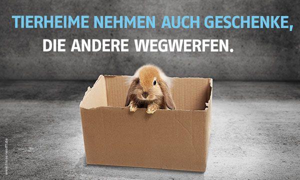 Tierheime helfen Mehr