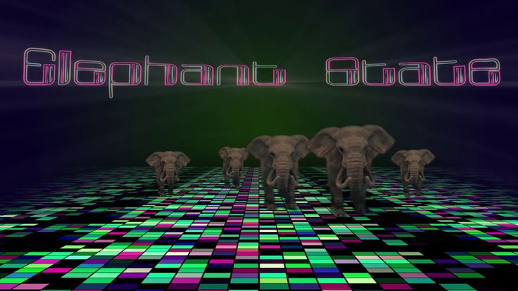 Elephant State - New Debut Single & Video - Dance music  - Cosmo Masiell...